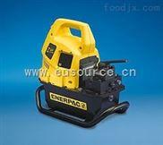 优势供应美国ENERPAC手动泵ENERPAC电动泵等欧美备件