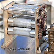 小型甘蔗榨汁机厂家|电动甘蔗榨汁机价格