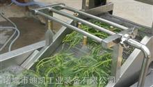 厂家供应菠菜气泡清洗流水线