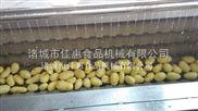 新鲜土豆去皮机土豆清洗机