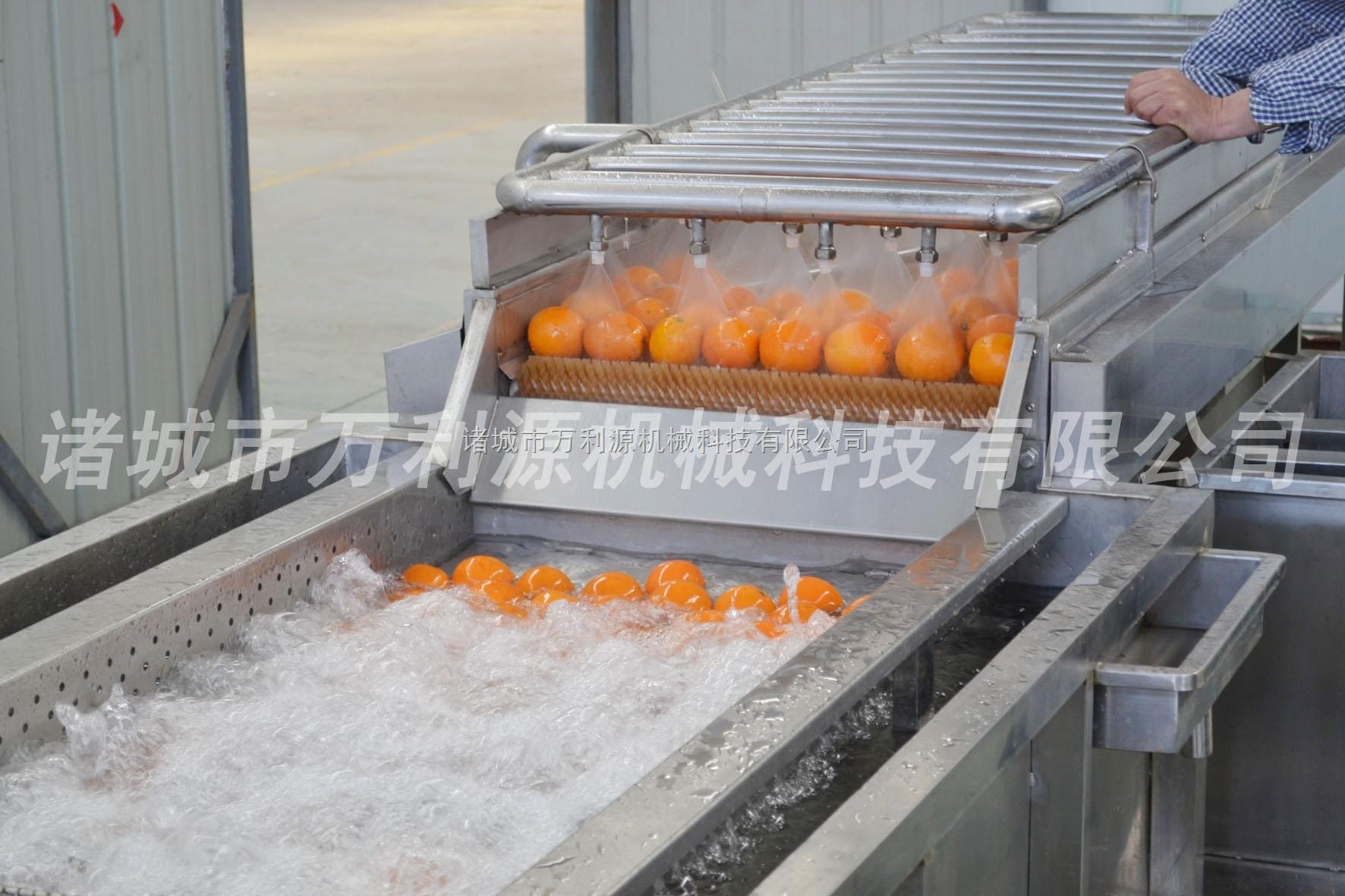 *红薯清洗机/萝卜清洗机/山芋清洗机