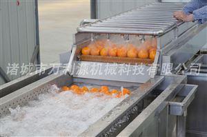 生产胡萝卜清洗机/毛辊清洗机厂家/地瓜清洗机