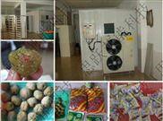 果品烘干机、水果烘干机、果脯烘干机