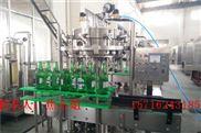DGCF系列-全自動三合一玻璃瓶啤酒灌裝機
