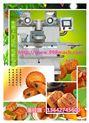 月餅機價格 月餅餡機廠家 全自動月餅機 多功能月餅機