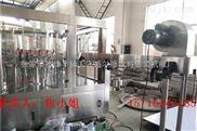 CGF-山泉水设备