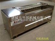 胡萝卜清洗机 土豆清洗机(山东华邦专业生产)