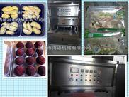 KIS1-4-有机蓝莓、桑葚气调保鲜封口机*大小型碗装盒式食品真空包装机