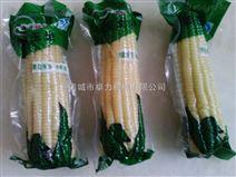 粘玉米真空包装机