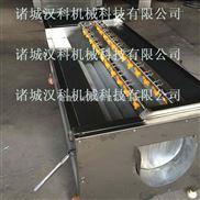 QX-1500-土豆去皮机 扇贝清洗机 核桃清洗机