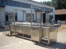 连续式导热油油炸生产线