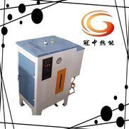 50公斤蒸汽量的电加热蒸汽小锅炉