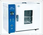 鼓风式电热干燥箱 101-0ES