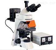 荧光显微镜BM2000Z荧光显微镜