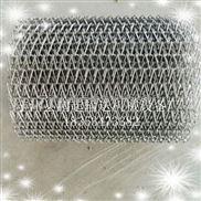 网带 网链 食品网带 不锈钢304 耐高温网带