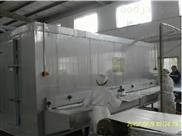 瑞尔隧道式多功能网带单体速冻机
