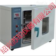 DHG101A-1電熱恒溫鼓風干燥箱制造廠,實驗室儀器