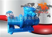 旋涡泵 磁力漩涡泵CW型