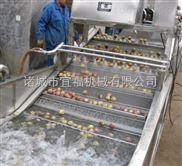 YQX-5300型苹果蔬菜清洗机