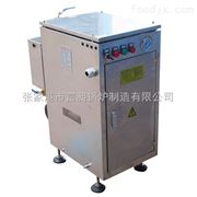 SLDR0.05-0.7立式不锈钢电蒸汽发生器