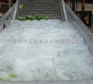 QX-4-剁辣椒全套加工设备,蕨菜清洗机,大青菜清洗设备