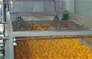 小型果汁饮料生产线