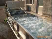 北京水果清洗機 蘋果清洗機 昊昌全自動清洗機