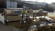 新疆红枣清洗机