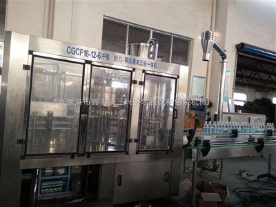 DGCF系列小型全自动瓶装含气饮料灌装设备