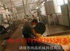 热销冻干薯条油炸机 燃气自动油炸机 尚品制造自动控温自动滤油