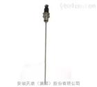 WZPK-566圆接插式铠装热电阻