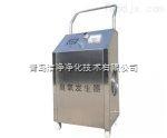 青岛净化工程臭氧消毒器配套设备
