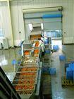 NFC果汁生产线厂家