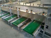 舜康定做1100加工清洗设备蒜米分级机