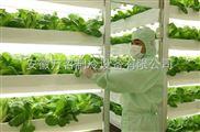 专业安装蔬菜保鲜冷库的公司 安徽万召