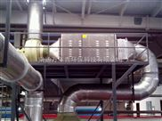 WNQ-FC-苏氨酸废气净化
