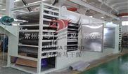 产量2000kg/h瓜子网带式干燥机