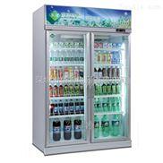 便利店冰柜便利店专用冰柜