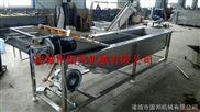 厂价直销大枣清洗流水线 清洗机设备 专业制造商 高效节能