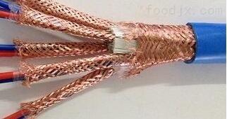 DJYP3VP3-300/500V4*2*1.0计算机电缆