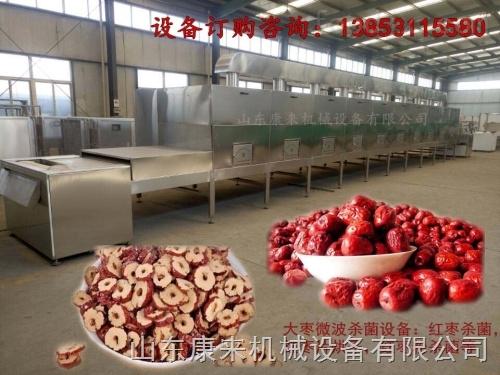 济南红枣杀虫卵设备,微波红枣杀虫卵设备