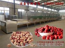 新疆红枣杀虫卵设备,批量红枣 虫卵处理设备