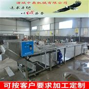 500型水果蔬菜清洗机生产厂家
