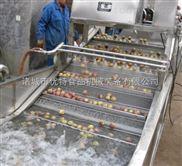 果蔬清洗机流水线
