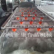 zk-2600-供网带式果蔬气泡清洗机
