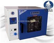 精密型电热恒温鼓风干燥箱 高温鼓风烘箱 台式电热数显实验室烘箱