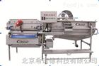 XND-210螺旋式蔬菜水果清洗设备