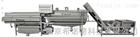 XND042球茎类果蔬清洗流水线设备