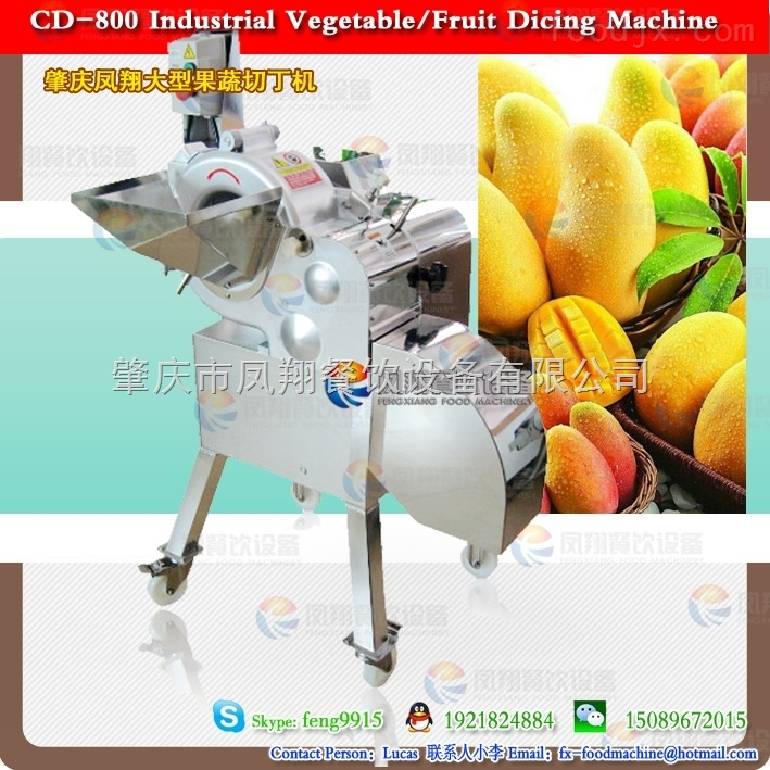 肇庆凤翔 中国台湾原装切菜机 木瓜马铃薯洋葱番茄芒果三维切丁机