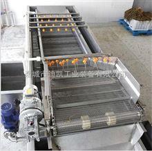 DKQX-4000果蔬加工设备|大型果蔬加工流水线